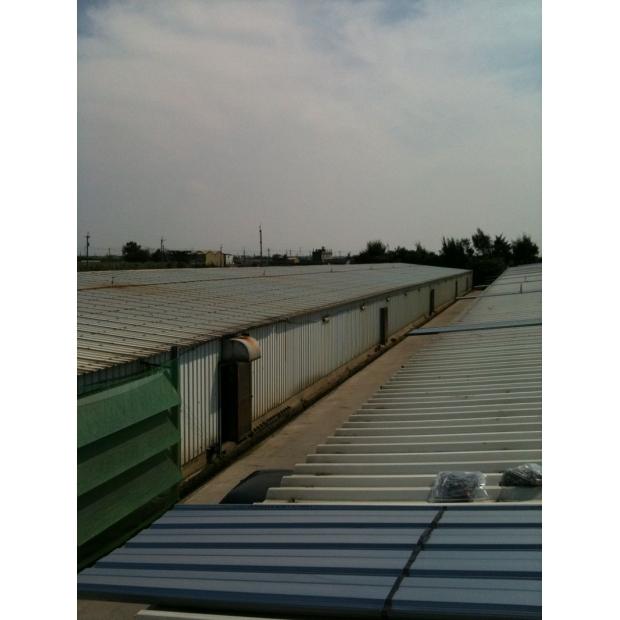浪板施工維修 | 彰化雞舍